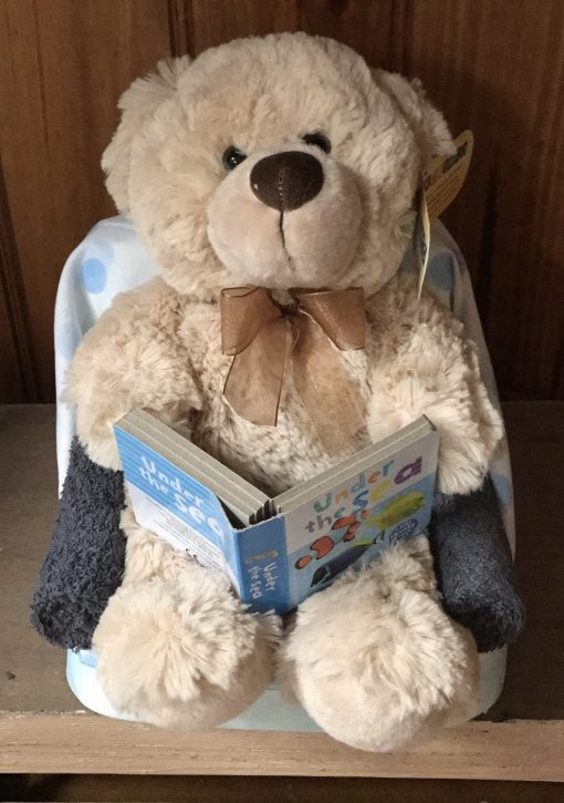 Baby Boy Reading Teddy