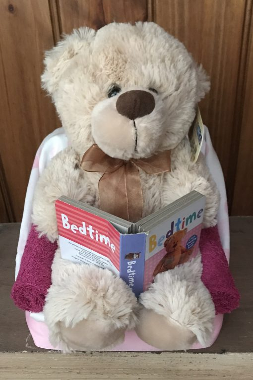 Baby GIrl Reading Teddy